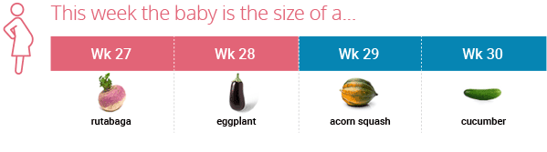 Pregnancy milestones at month 7 (~weeks 27-30).